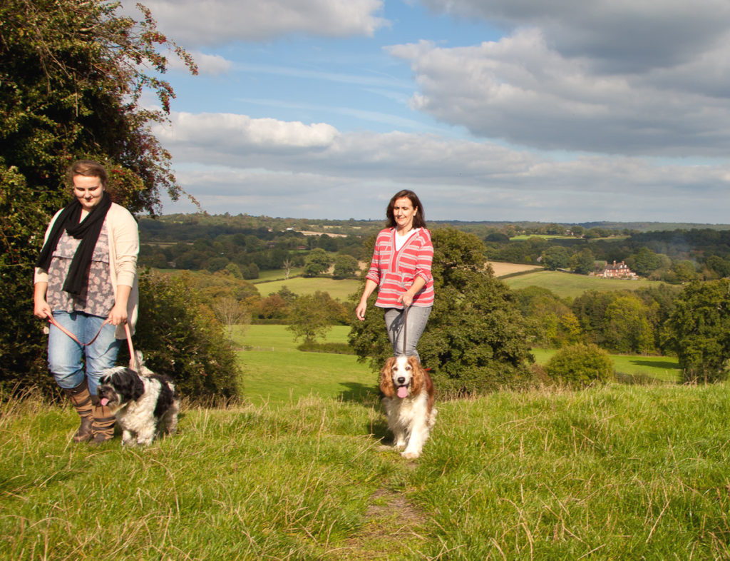 Photo_1_High_Weald_view_dog_walkers